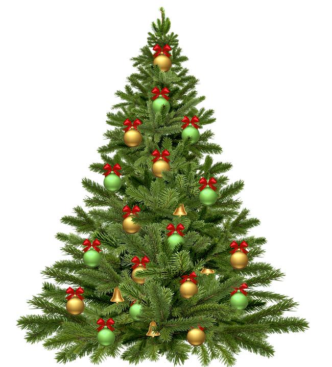 Materiál ktorý nepatrí dokrbu - vianočné stromčeky